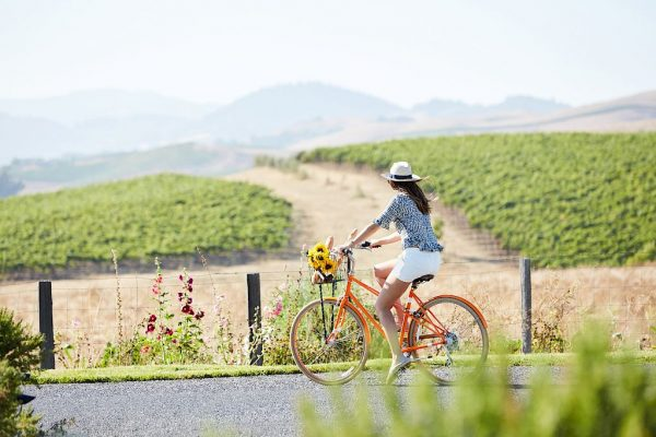 carneros_aug_brittany_selects_1038_no_text_copy.1024x682-srcset